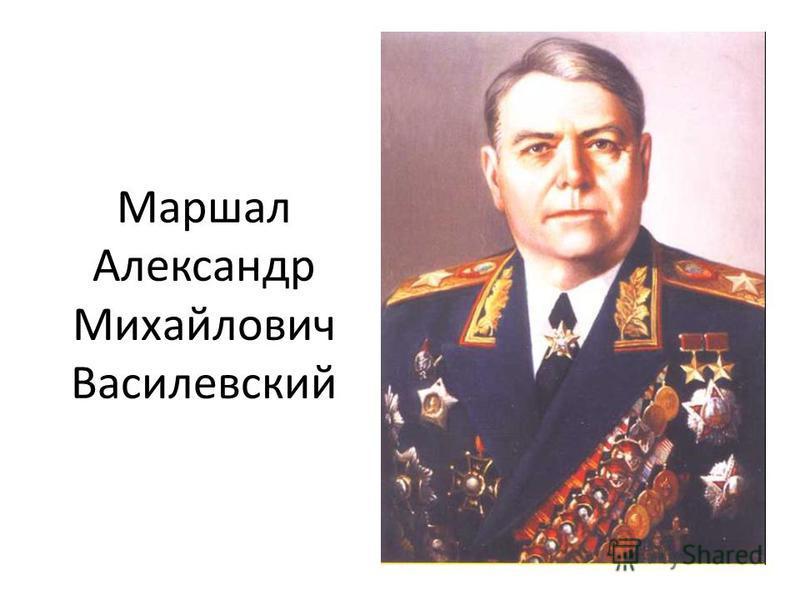 Маршал Александр Михайлович Василевский