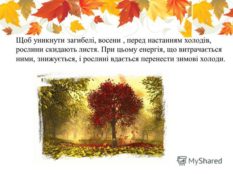 Щоб уникнути загибелі, восени, перед настанням холодів, рослини скидають листя. При цьому енергія, що витрачається ними, знижується, і рослині вдається перенести зимові холоди.