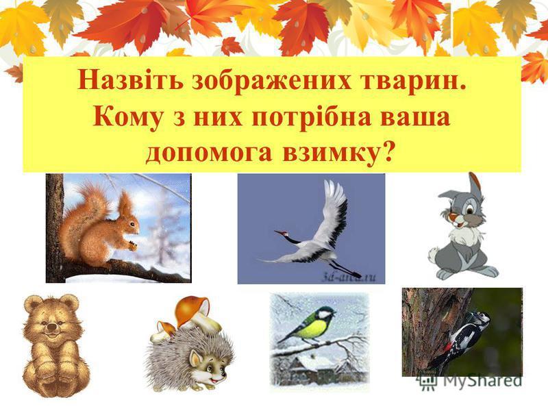 Назвіть зображених тварин. Кому з них потрібна ваша допомога взимку?