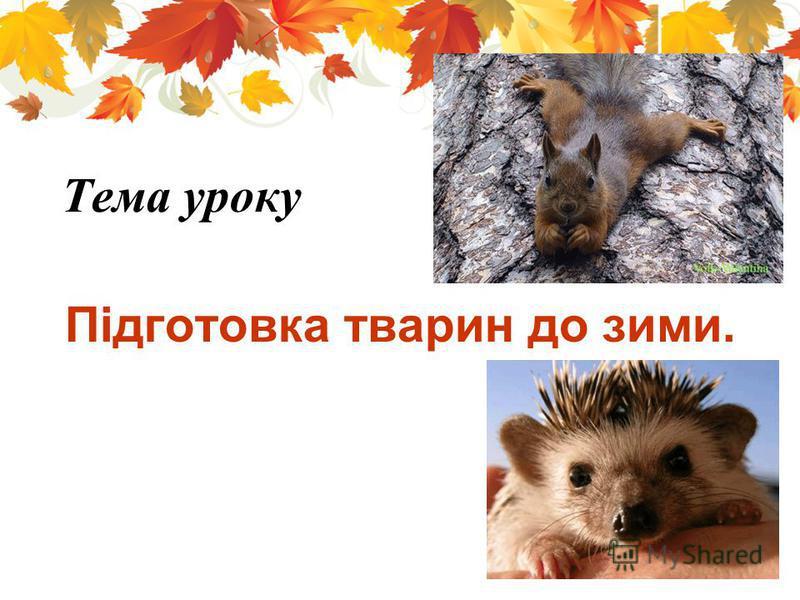 Підготовка тварин до зими. Тема уроку