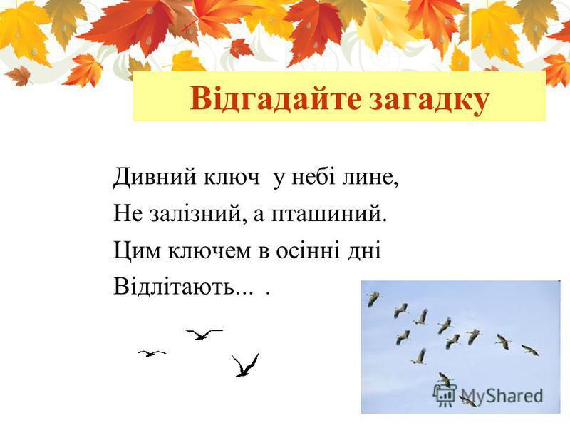 Відгадайте загадку Дивний ключ у небі лине, Не залізний, а пташиний. Цим ключем в осінні дні Відлітають....