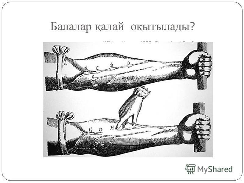 Балалар қалай оқытылады ? William Harvey, 1628 Does blood flow?