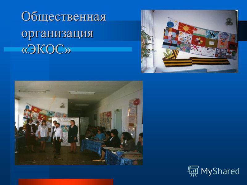 Общественная организация «ЭКОС»