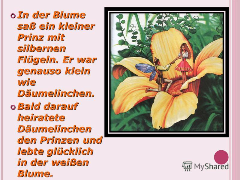 In der Blume saß ein kleiner Prinz mit silbernen Flügeln. Er war genauso klein wie Däumelinchen. In der Blume saß ein kleiner Prinz mit silbernen Flügeln. Er war genauso klein wie Däumelinchen. Bald darauf heiratete Däumelinchen den Prinzen und lebte