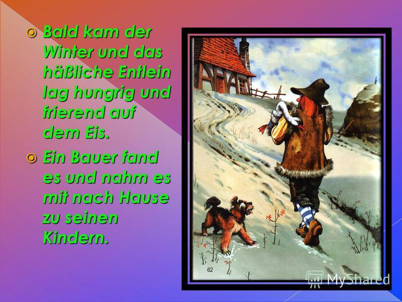 Bald kam der Winter und das häßliche Entlein lag hungrig und frierend auf dem Eis. Bald kam der Winter und das häßliche Entlein lag hungrig und frierend auf dem Eis. Ein Bauer fand es und nahm es mit nach Hause zu seinen Kindern. Ein Bauer fand es un
