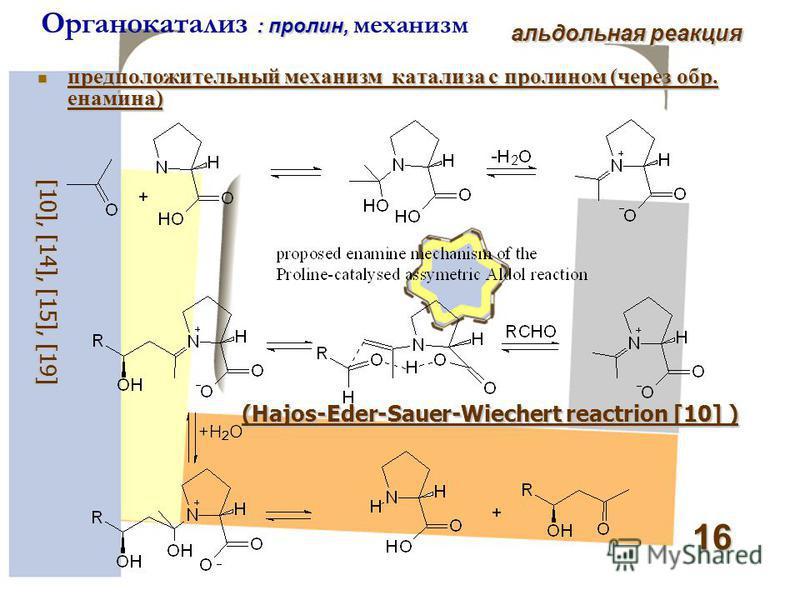 16 : пролин, Органокатализ : пролин, механизм альдольная реакция предположительный механизм катализа c пролином (через обр. енамина) предположительный механизм катализа c пролином (через обр. енамина) [1 0 ], [1 4 ], [ 15 ], [ 19 ] (Hajos-Eder-Sauer-