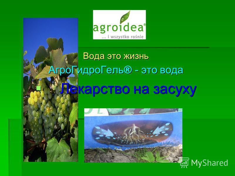 Вода это жизнь Агро ГидроГель ® - это вода Лекарство на засуху Лекарство на засуху