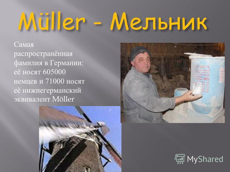 Müller - Мельник Самая распространённая фамилия в Германии: её носят 605000 немцев и 71000 носят её нижнегерманский эквивалент Möller