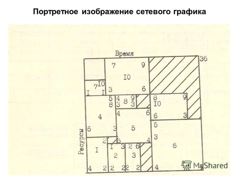 Портретное изображение сетевого графика 4