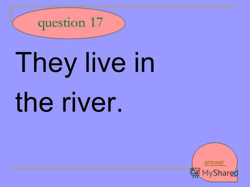 They live in the river. question 17 answer