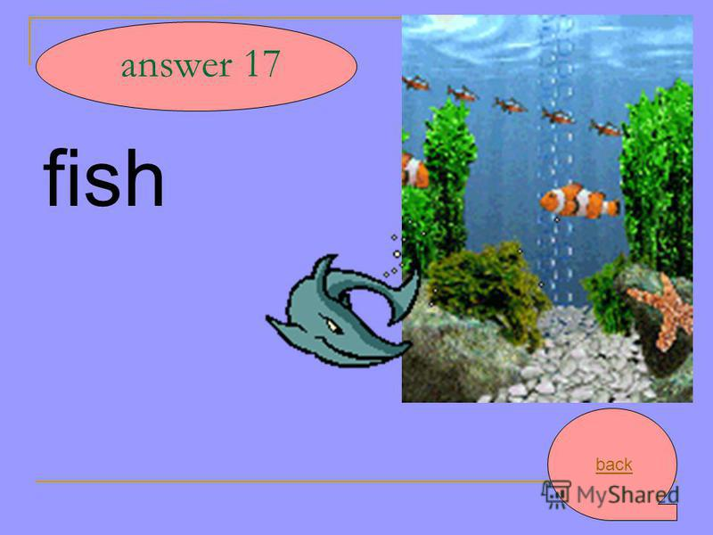 fish answer 17 back