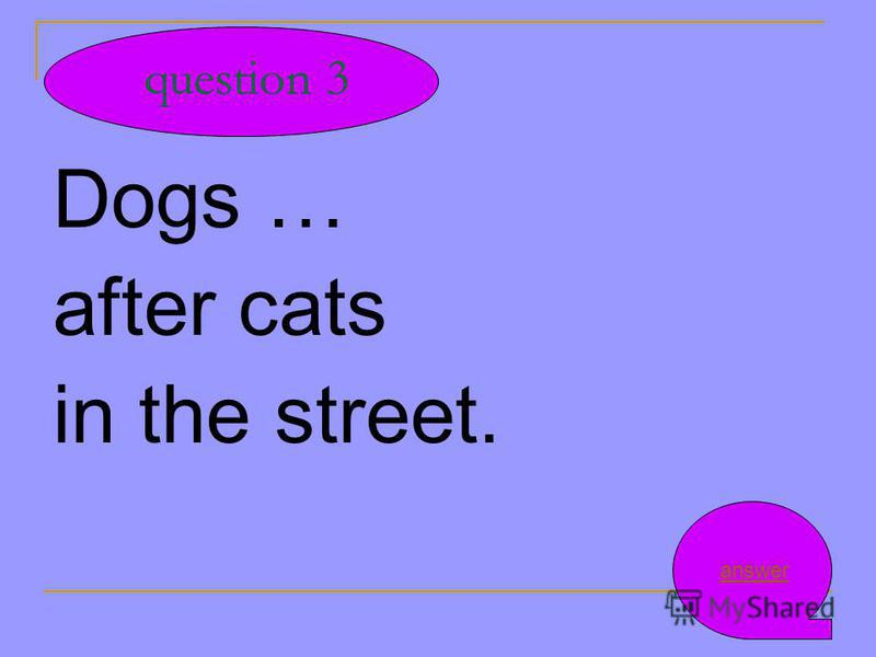 Dogs … after cats in the street. question 3 answer