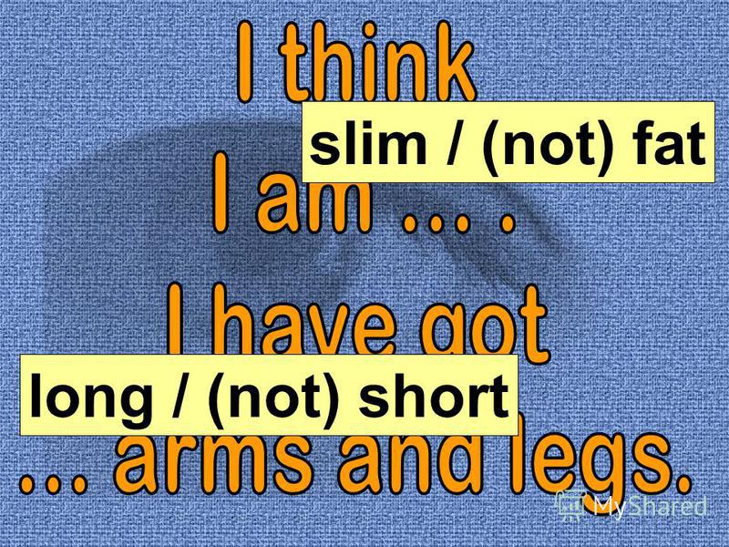 slim / (not) fat long / (not) short