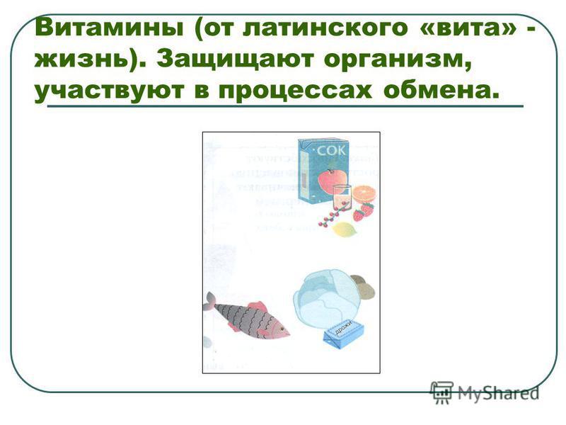Витамины (от латинского «вита» - жизнь). Защищают организм, участвуют в процессах обмена.