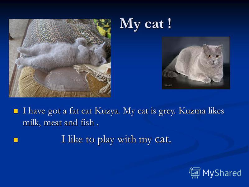 My cat ! My cat ! I have got a fat cat Kuzya. My сat is grey. Kuzma likes milk, meat and fish. I have got a fat cat Kuzya. My сat is grey. Kuzma likes milk, meat and fish. I like to play with my cat. I like to play with my cat.