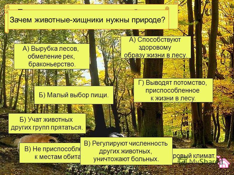 Почему многие животные лесной полосы занесены в Красную книгу? А) Вырубка лесов, обмеление рек, браконьерство. Г) Суровый климат. Б) Малый выбор пищи. В) Не приспособленность к местам обитания. Зачем животные-хищники нужны природе? Б) Учат животных д