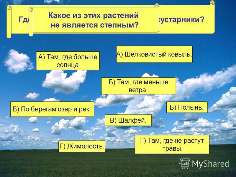 Где в степи могут расти деревья и кустарники? А) Там, где больше солнца. Б) Там, где меньше ветра. В) По берегам озер и рек. Г) Там, где не растут травы. Какое из этих растений не является степным? А) Шелковистый ковыль. Б) Полынь. В) Шалфей. Г) Жимо