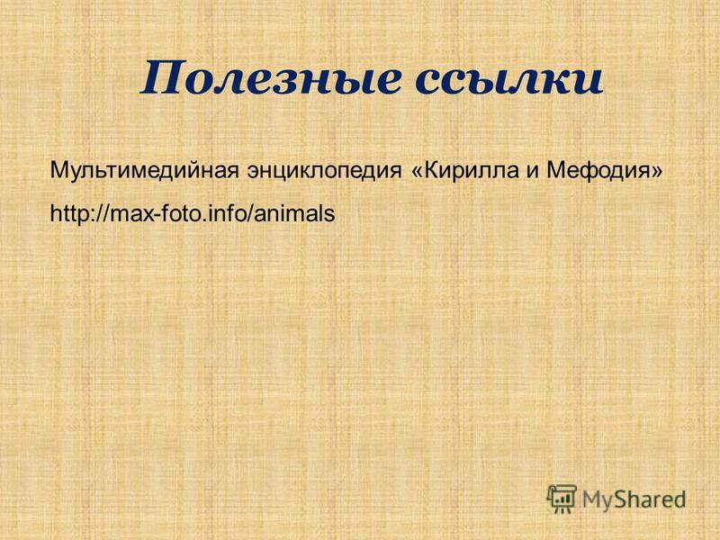 Полезные ссылки Мультимедийная энциклопедия «Кирилла и Мефодия» http://max-foto.info/animals