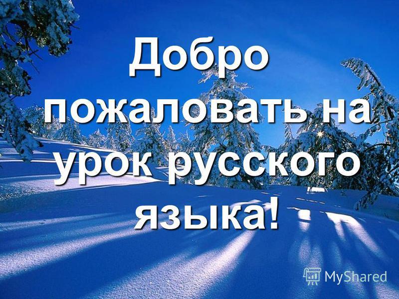 Добро пожаловать на урок русского языка!