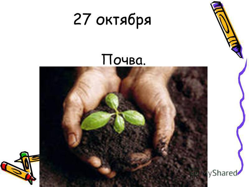 27 октября Почва.