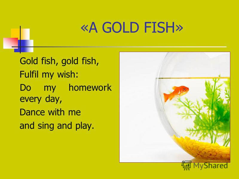 «A GOLD FISH» Gold fish, gold fish, Fulfil my wish: Do my homework every day, Dance with me and sing and play.