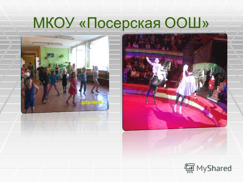 МКОУ «Посерская ООШ»
