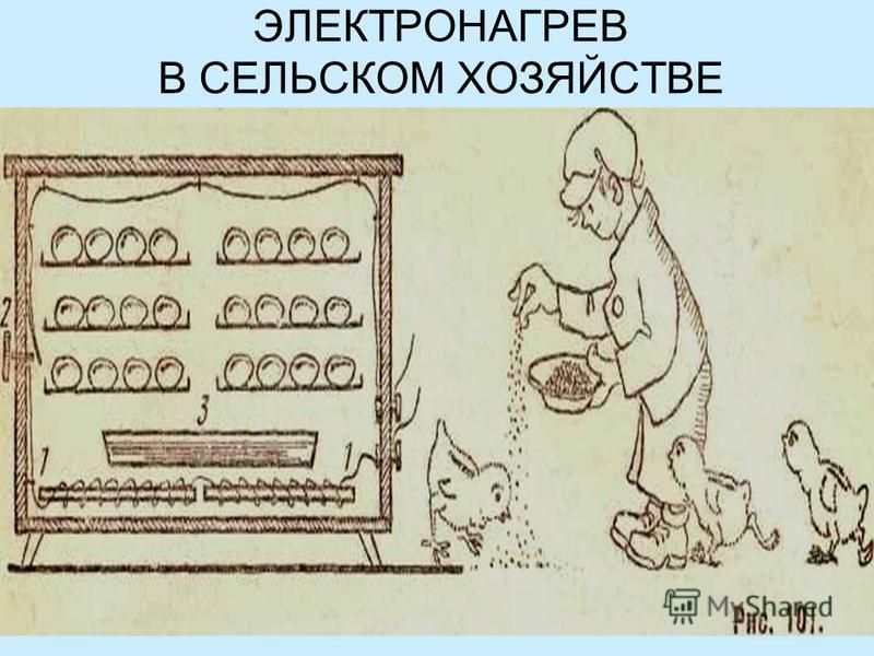 ЭЛЕКТРОНАГРЕВ В СЕЛЬСКОМ ХОЗЯЙСТВЕ