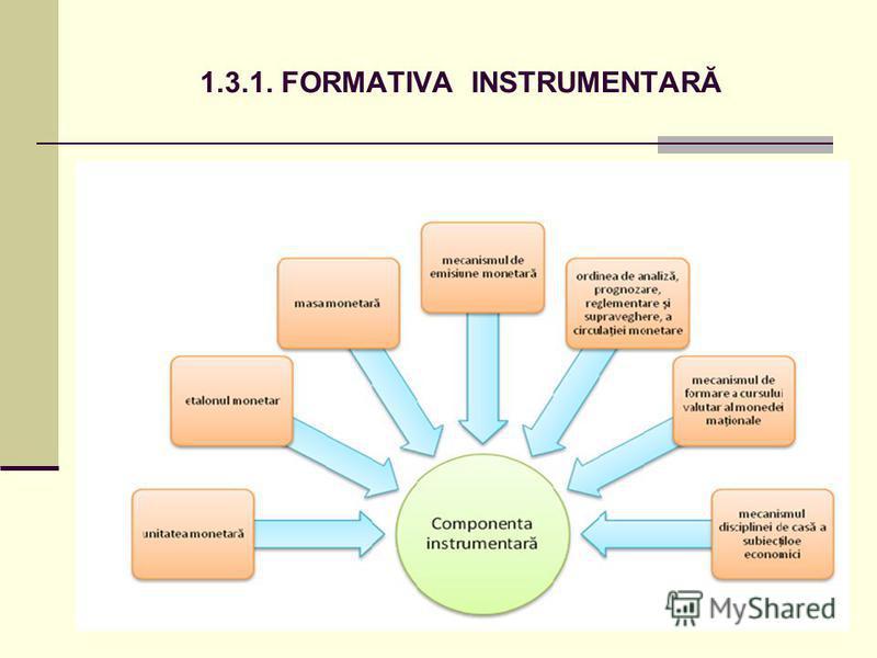 1.3.1. FORMATIVA INSTRUMENTARĂ