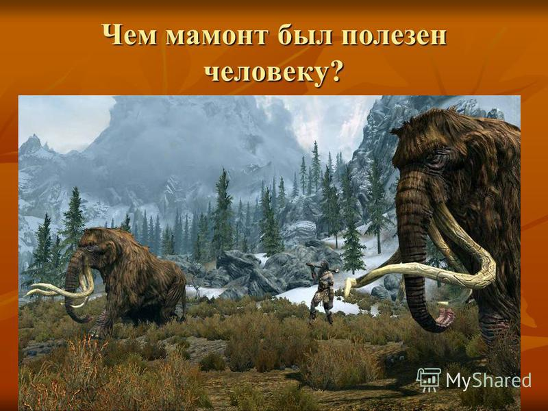 Чем мамонт был полезен человеку?