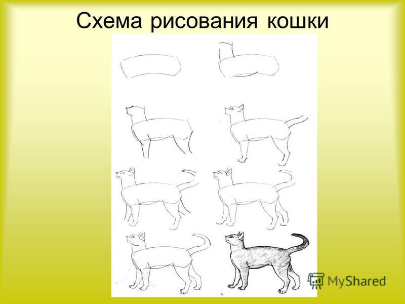 Схема рисования кошки