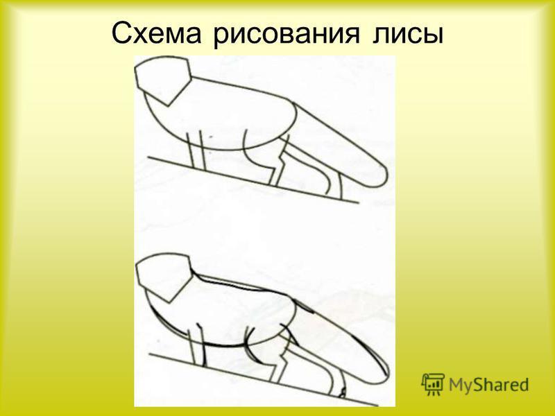 Схема рисования лисы