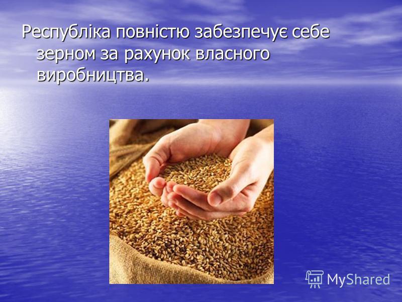 Республіка повністю забезпечує себе зерном за рахунок власного виробництва.