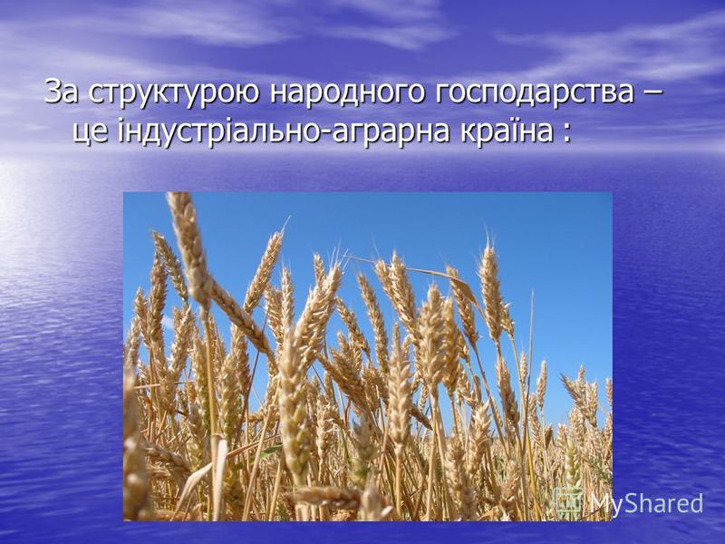 За структурою народного господарства – це індустріально-аграрна країна :