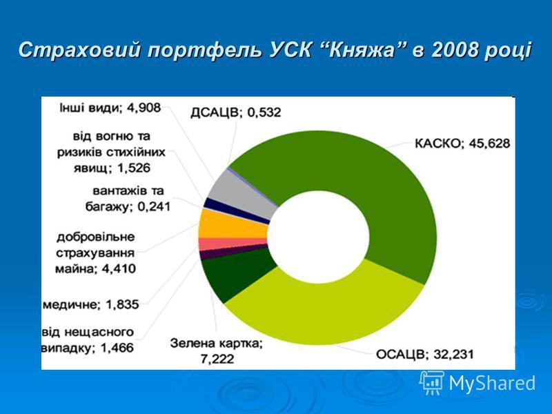 Страховий портфель УСК Княжа в 2008 році