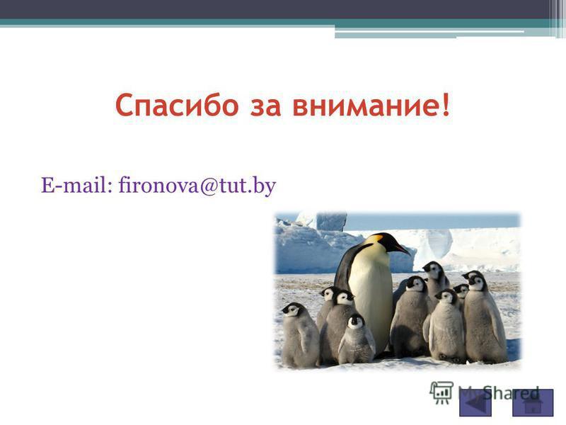 Спасибо за внимание! E-mail: fironova@tut.by