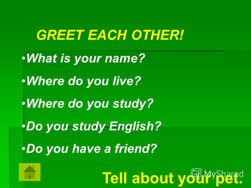 GREET EACH OTHER! What is your name? Where do you live? Where do you study? Do you study English? Do you have a friend? Tell about your pet.