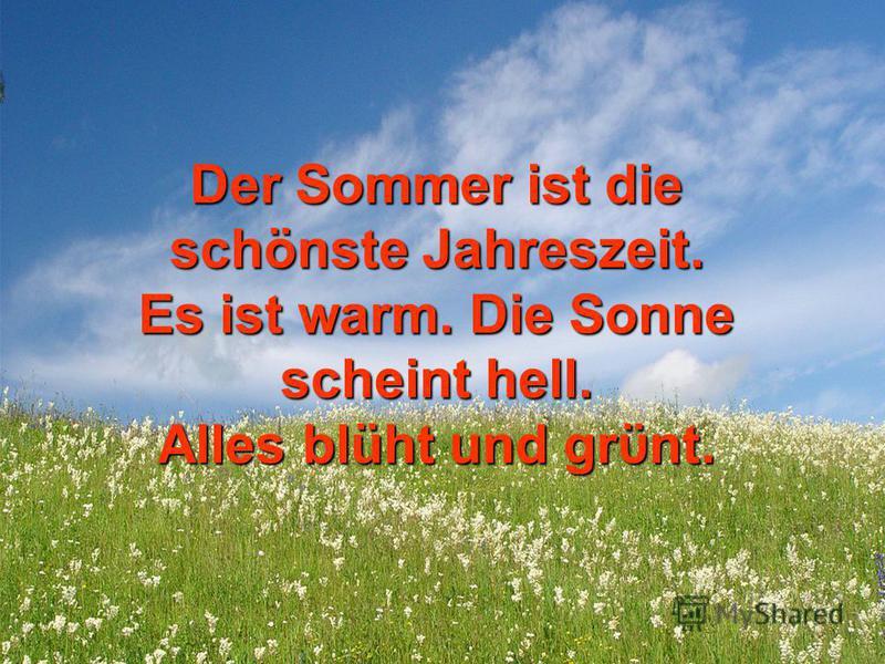 Der Sommer ist die schönste Jahreszeit. Es ist warm. Die Sonne scheint hell. Alles blüht und grϋnt.