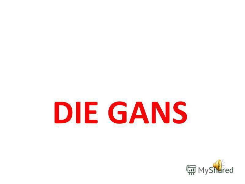 DIE GANS