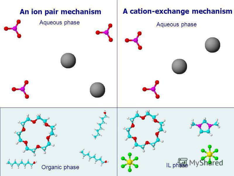 Organic phase Aqueous phase An ion pair mechanism A cation-exchange mechanism Aqueous phase IL phase