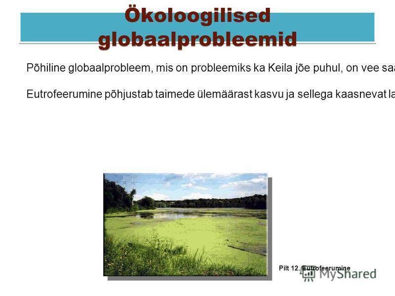 Ökoloogilised globaalprobleemid Põhiline globaalprobleem, mis on probleemiks ka Keila jõe puhul, on vee saastumine - see põhjustab nakkushaiguste levikut ja ka veekogude eutrofeerumist. Eutrofeerumine põhjustab taimede ülemäärast kasvu ja sellega kaa