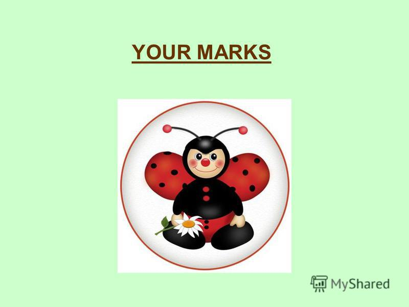 YOUR MARKS