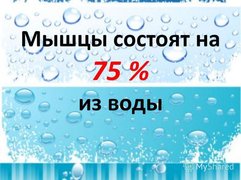 Мышцы состоят на 75 % из воды