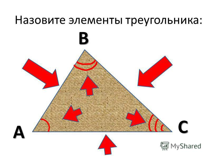 Назовите элементы треугольника: В А С