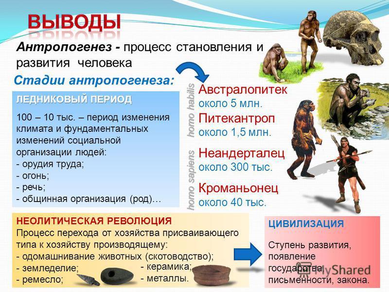Антропогенез - процесс становления и развития человека Стадии антропогенеза: Австралопитек около 5 млн. Питекантроп около 1,5 млн. Неандерталец около 300 тыс. Кроманьонец около 40 тыс. ЛЕДНИКОВЫЙ ПЕРИОД 100 – 10 тыс. – период изменения климата и фунд