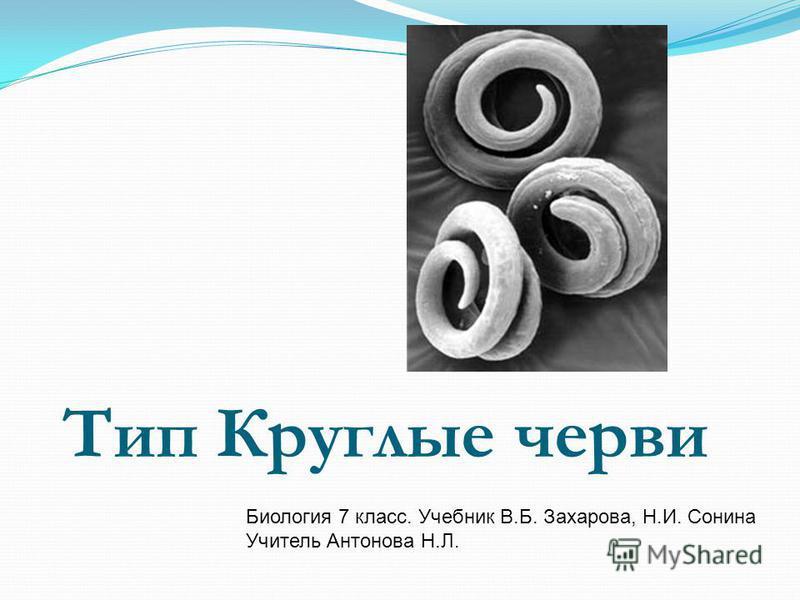 Тип Круглые черви Биология 7 класс. Учебник В.Б. Захарова, Н.И. Сонина Учитель Антонова Н.Л.