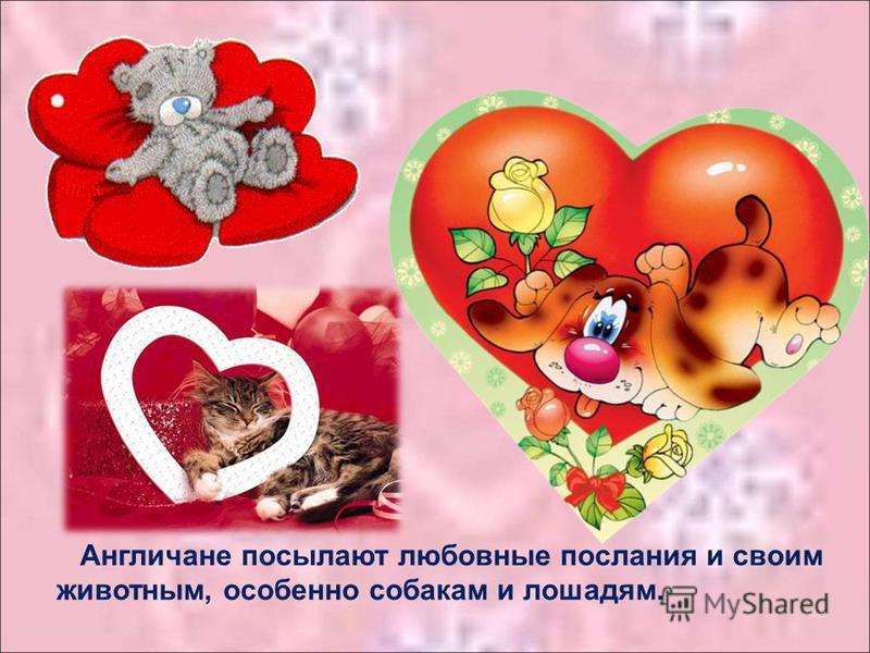 Англичане посылают любовные послания и своим животным, особенно собакам и лошадям.