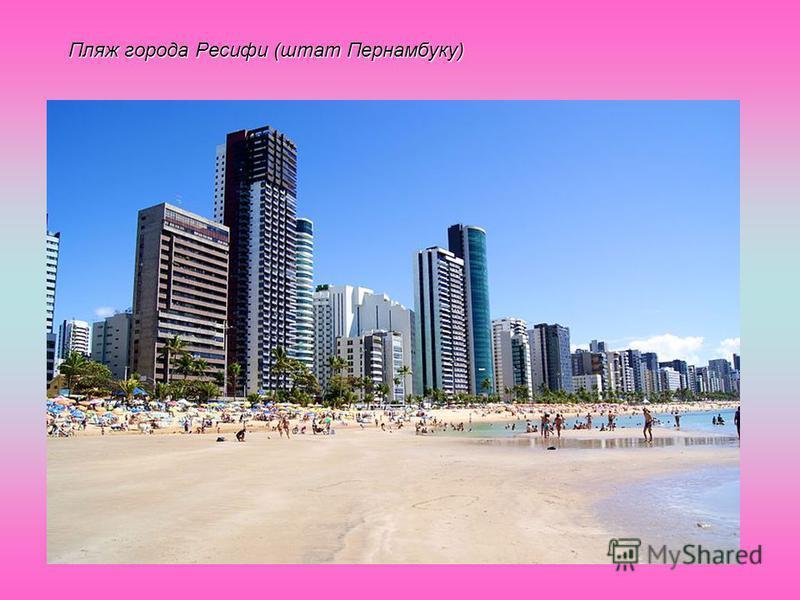 Пляж города Ресифи (штат Пернамбуку)