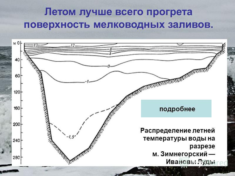 Летом лучше всего прогрета поверхность мелководных заливов. Распределение летней температуры воды на поверхности центральной части Белого моря Распределение летней температуры воды на разрезе м. Зимнегорский Ивановы Луды подробнее