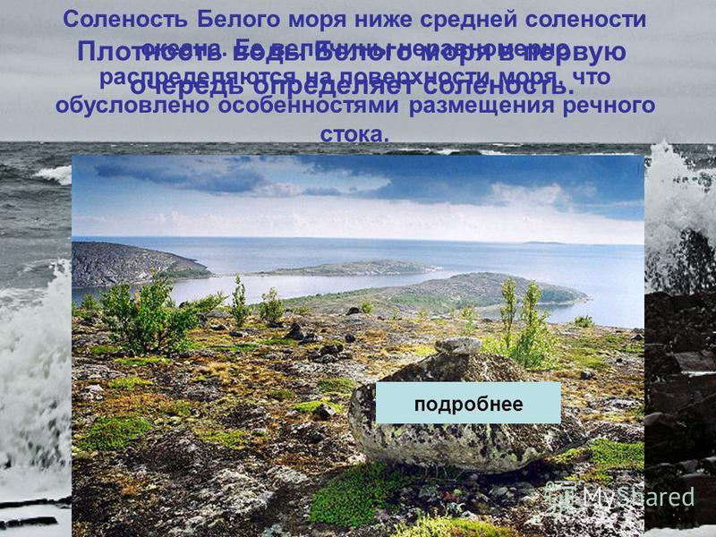 Соленость Белого моря ниже средней солености океана. Ее величины неравномерно распределяются на поверхности моря, что обусловлено особенностями размещения речного стока. Плотность воды Белого моря в первую очередь определяет соленость. подробнее