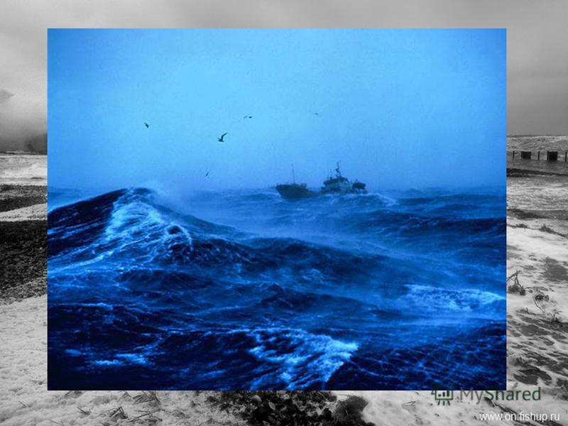 Белое море принадлежит к числу бурных морей. Наиболее сильное волнение наблюдается в октябреноябре с северной части моря. В это время волнение бывает до 45 баллов. Небольшие размеры водоема не позволяют развиться крупным волнам. В Белом море преоблад